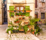 Fototapety Flowers In Front Of Old Building-Rovinj, Croatia