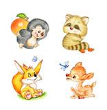 Fototapety Set of animals: Fox, Deer, Raccoon, Hedgehog