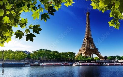 Wall mural paris eiffel france river beach trees