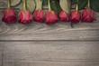 Obrazy na płótnie, fototapety, zdjęcia, fotoobrazy drukowane : Frame of beautiful red roses
