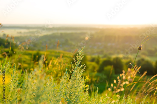 Foto op Canvas Europa Sunrise in the summer