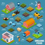 Organic food isometric flowchart