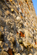 wall milan    italy old   church sky  background  stone