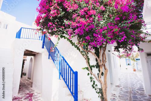 Fototapeta Traditional greek house with flowers in Paros island, Greece