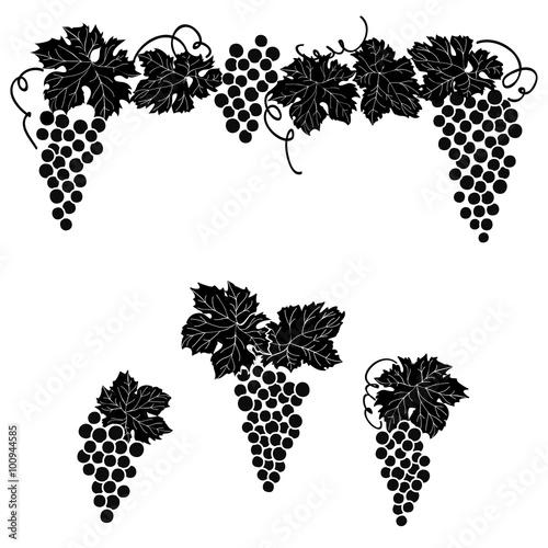 Fototapeta Grapes engraved design set Vine grape ornament element decor set.