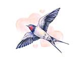 Beautiful swallow. Watercolor illustration. Spring bird brings love. Handwork - 100946172
