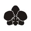Obrazy na płótnie, fototapety, zdjęcia, fotoobrazy drukowane : орхидея и профиль девушки
