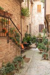 Fototapeta cicha uliczka Włoska z kwiatami