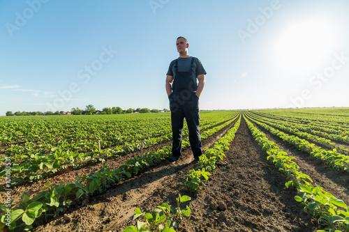 Proud farmer in green soybean field