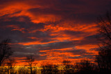 Beautiful orange sunset with dark clouds and trees silhouettes