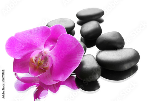 Fototapeta  Black spa stones and orchids isolated on white
