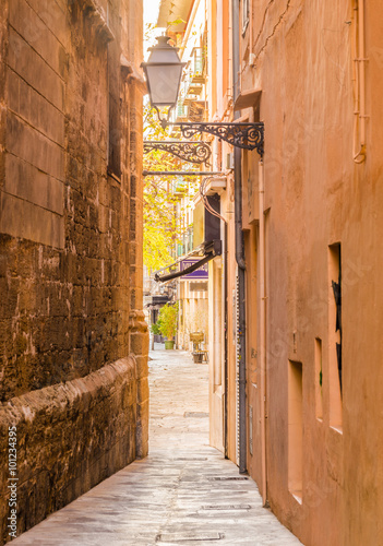 Narrow passage way in a old town 101234395