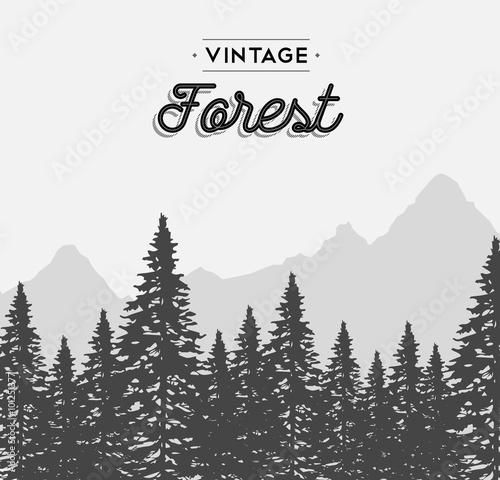Vintage forest text label on winter tree landscape