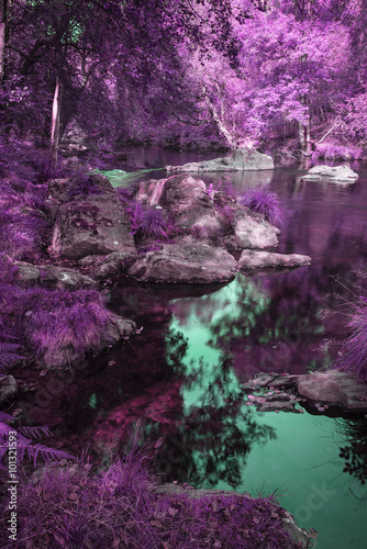 Beautiful river flowing through alternate surreal colored forest