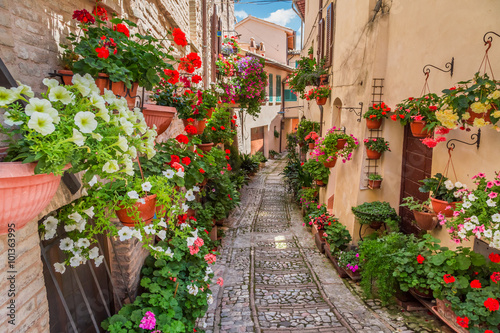 obraz lub plakat Street in small town in Italy in sunny day, Umbria