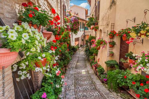 Zdjęcia na płótnie, fototapety na wymiar, obrazy na ścianę : Street in small town in Italy in sunny day, Umbria