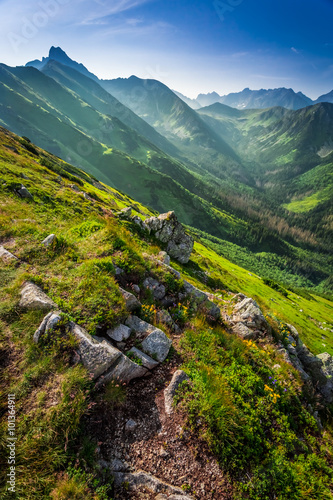 Dawn in the Tatra Mountains in summer