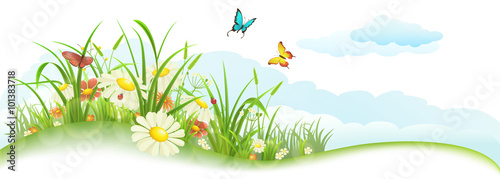 Green spring summer banner with grass, flowers, butterfly and clouds - 101383718