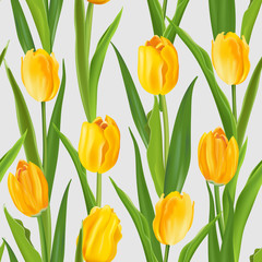 Spring Flower Background - Seamless Pattern with Tulips