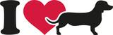 I love Dachshund icon
