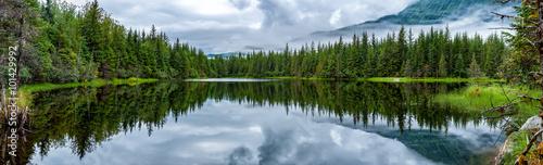 Lake near Mendhenall Glacier huge landscape