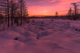 Winter landscape with forest, cloudy sky, trees and sunset