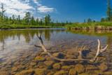Summer landscape with river, clouds, antler