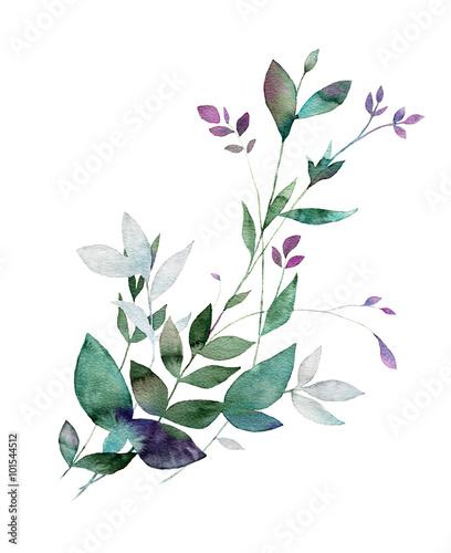 Floral watercolor painting. Design element. Hand drawn decorative botanical print. - 101544512