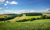Fototapety Saarland – Landschaft mit Roggenfeld – Kulturlandschaft bei Heusweiler Eiweiler im Sommer