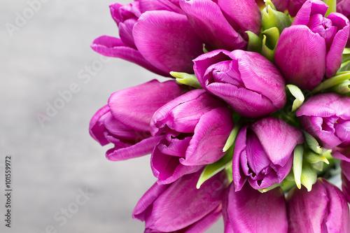 Zdjęcia na płótnie, fototapety na wymiar, obrazy na ścianę : Purple tulip bouquet on the gray background.