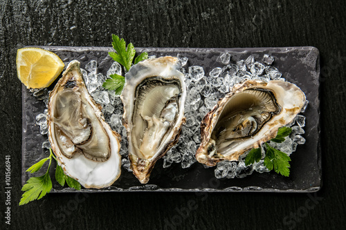 Oysters served on stone plate with ice drift Poster