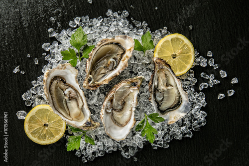 Poster Oysters served on stone plate with ice drift