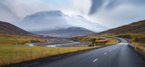 Fototapety Curve line road surround by yellow field with snow mountain background Autumn season Iceland