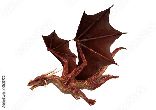 Red Dragon On White