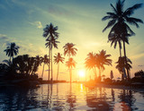 Palm trees on a tropical seaside during amazing sunset. - Fine Art prints