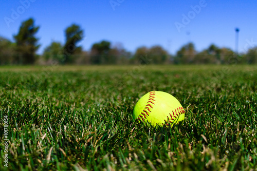 Foto Murales Softball at a Field in California