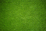 artificial grass - 101780352