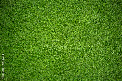 Foto op Canvas Gras artificial grass