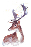 christmas watercolor deer Hand painted illustration