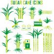 sugar cane icons vector.