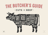 Fototapety Cut of beef set. Poster Butcher diagram and scheme - Cow. Vintage typographic hand-drawn. Vector illustration.