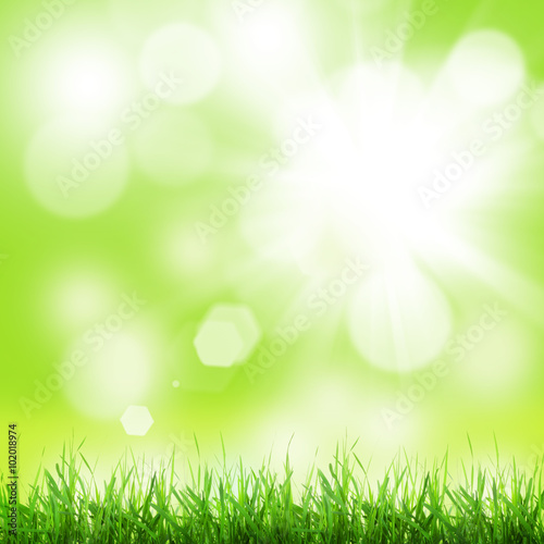 Papiers peints Herbe Abstract sunny spring background