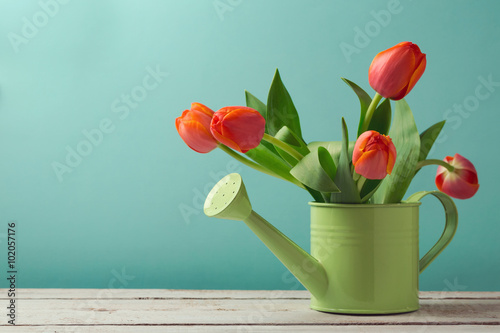 Spring tulip flower bouquet in watering can with copy space Poster
