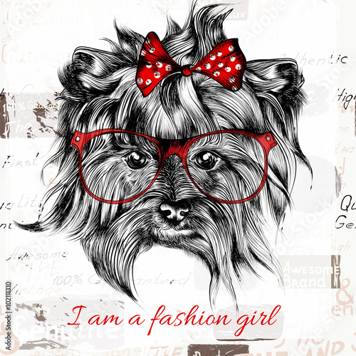 Vector hand drawn hipster dog with red bow and glasses fashion g - 102111310