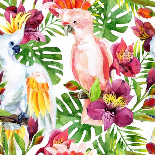 watercolor Australian Cockatoo seamless pattern - 102134790