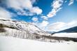 Yukon landscape 4