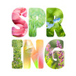 Word Spring with colorful nature images inside the letters