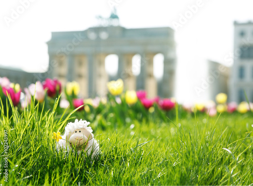 easter in Berlin, toy sheep hiding in green grass with Brandenburger Tor and a fountain © ploosy