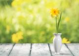 Fototapety Vase.