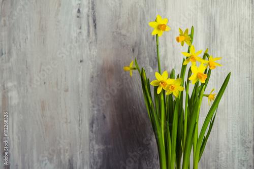 Zdjęcia na płótnie, fototapety, obrazy : narcisi gialli su sfondo di legno